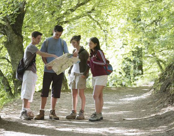 People in Hertford Heath woods looking at a map